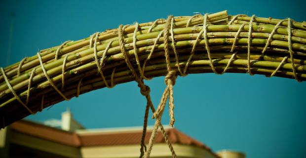 bamboo-elastico