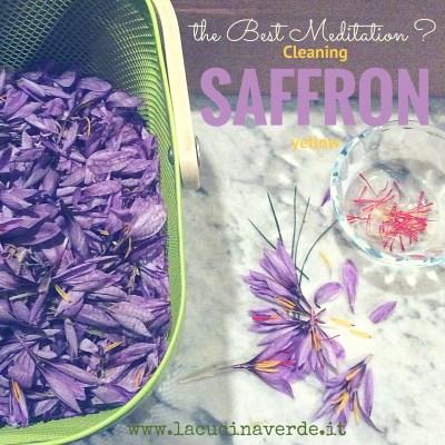 Zafferano: pistilli e petali