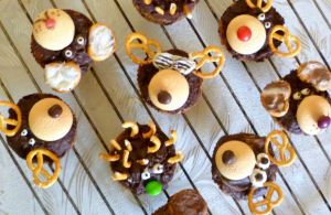 muffin animals