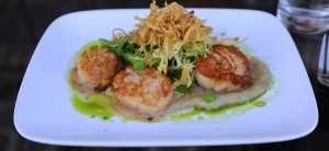 Scallops at Perch