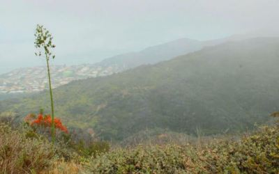 Los Liones Canyon Trail – My Favorite Hike