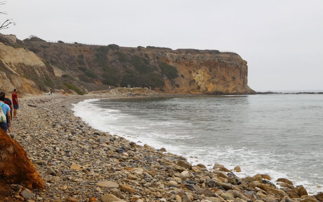 A Fun Beach Hike to Tidepools at Abalone Cove in Palos Verdes