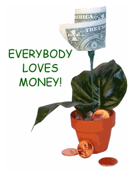 How About A Real Money Tree Gift