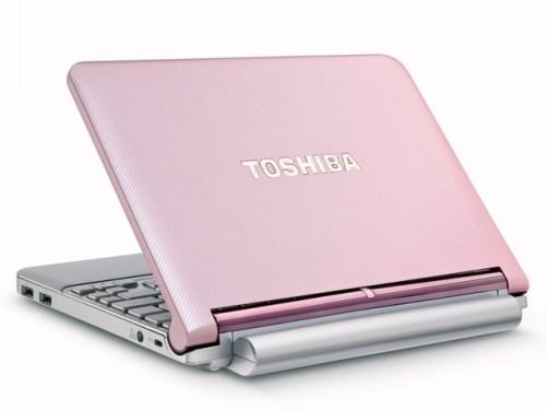 the-new-toshiba-mini-nb205-mini-notebook-computer-2