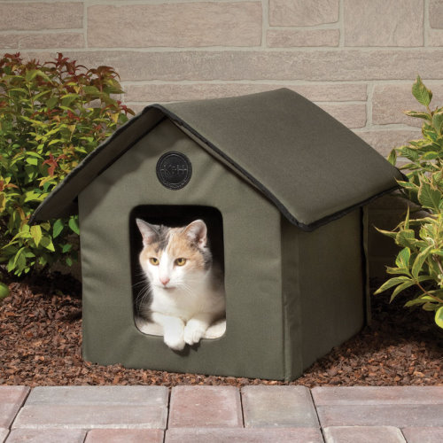 Cat House With Heated Floor
