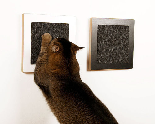 Scratching Pads for Your Modern Cat