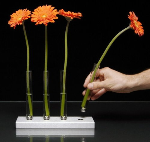 Adaptation Vases by Brandon Perhacs