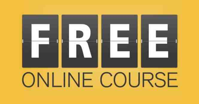 increase website traffic- Free online course- Build