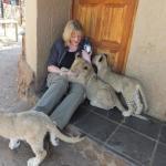 [Interview] – Animal volunteering in Africa – Part two