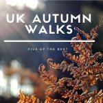 UK autumn walks: Five of the best