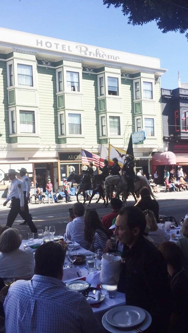 paradehorses