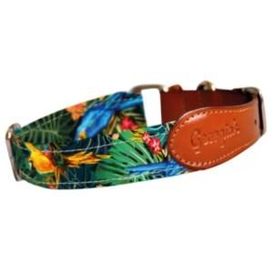 Collar para perro - Diseño exclusivo Guacamayas | Ladralo.com