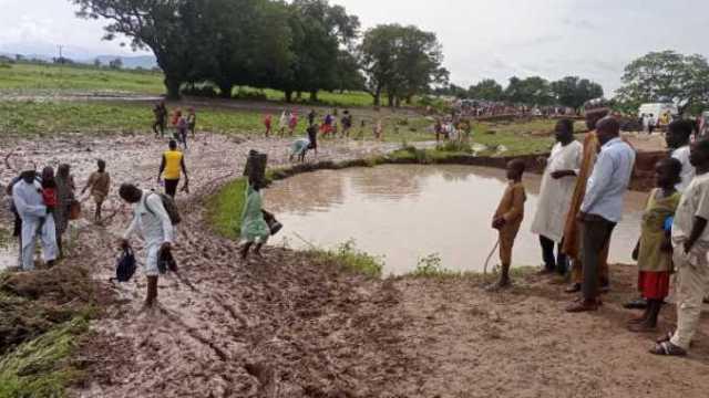 flood, 250 animals dead, Bauchi-Ningi-Kano road