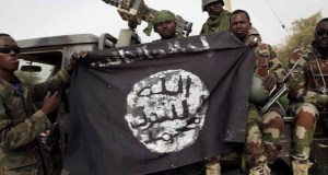Boko Haram has taken over 500 communities in Niger state, says LGA chairman