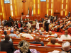 Senate condemns proposed $200m loan to buy mosquito nets in 2022