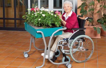 Terapia occupazionale  Fisioterapiariabilitazione  Casa