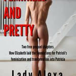 Free Feminization: Feminized and Pretty – The Prequel