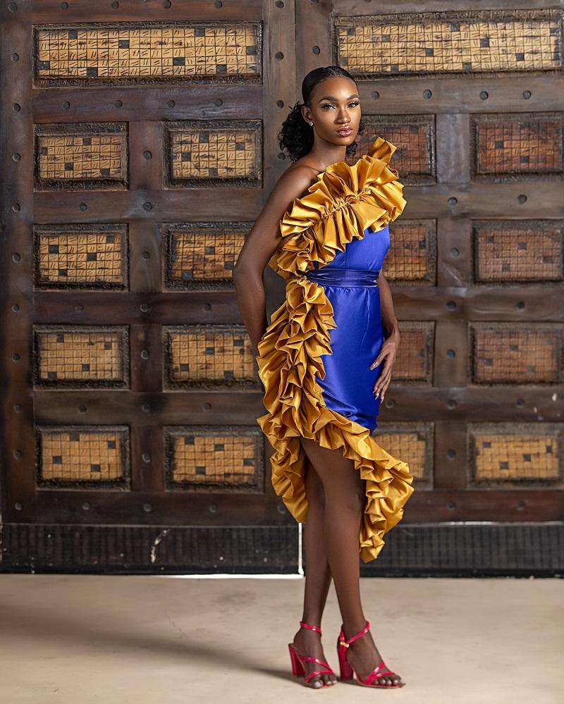 LadyBeellionaire 'Danielle' Dress