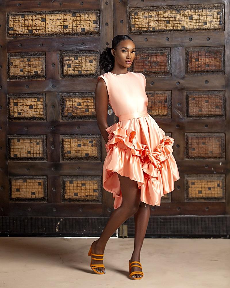 LadyBeellionaire vera dress2