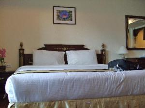 Eurasia Boutique Hotel and Residence bed