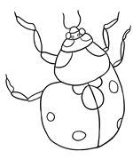 FREE Ladybug Coloring Pages to Print Out and Color!