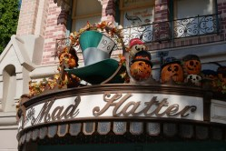 Pumpkins at The Mad Hatter Shop | Photo credit: Krista