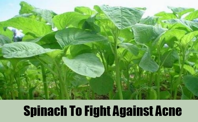 Spinach To Fight Against Acne