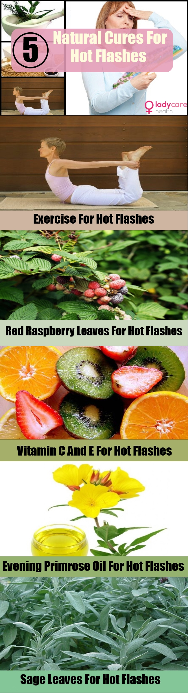 Best Natural Cures For Hot Flashes In Women