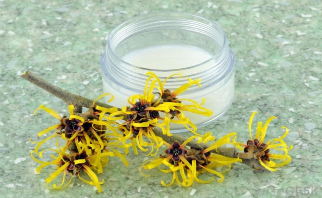 Witch Hazel Oil