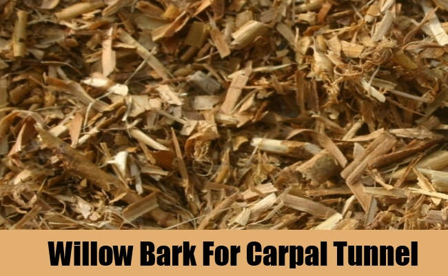 Willow Bark For Carpal Tunnel