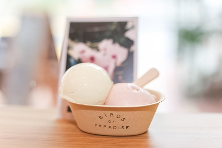 Birds of Paradise Gelato Strawberry Basil and Spiced Pear