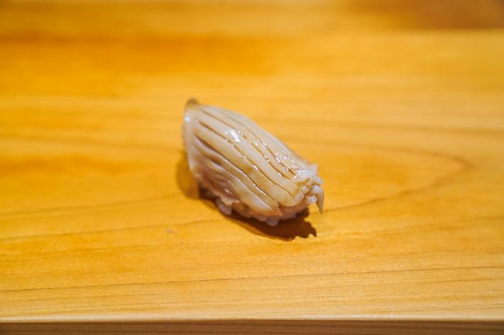 Ashino surf clam sushi
