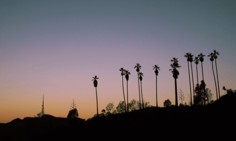 Los Angeles: Eating Like A Local In The City Of Angels
