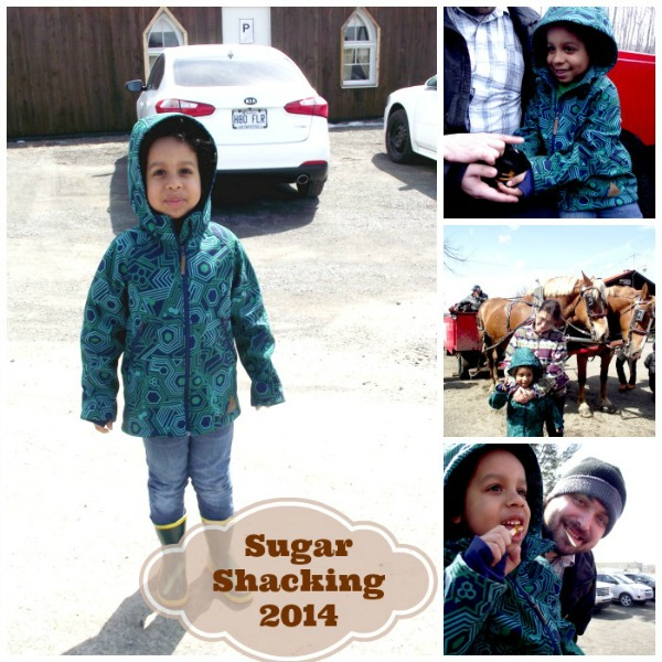 Little Man Sugar Shaking