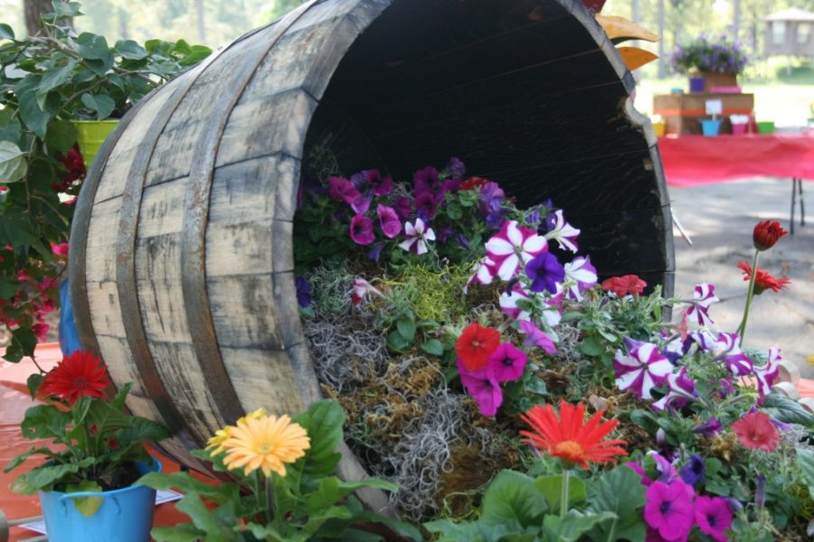 7 Amazing DIY Gardening Projects to Escape Stress