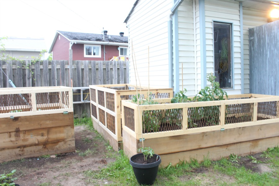 Raised Garden Beds & Prepping For The Summer