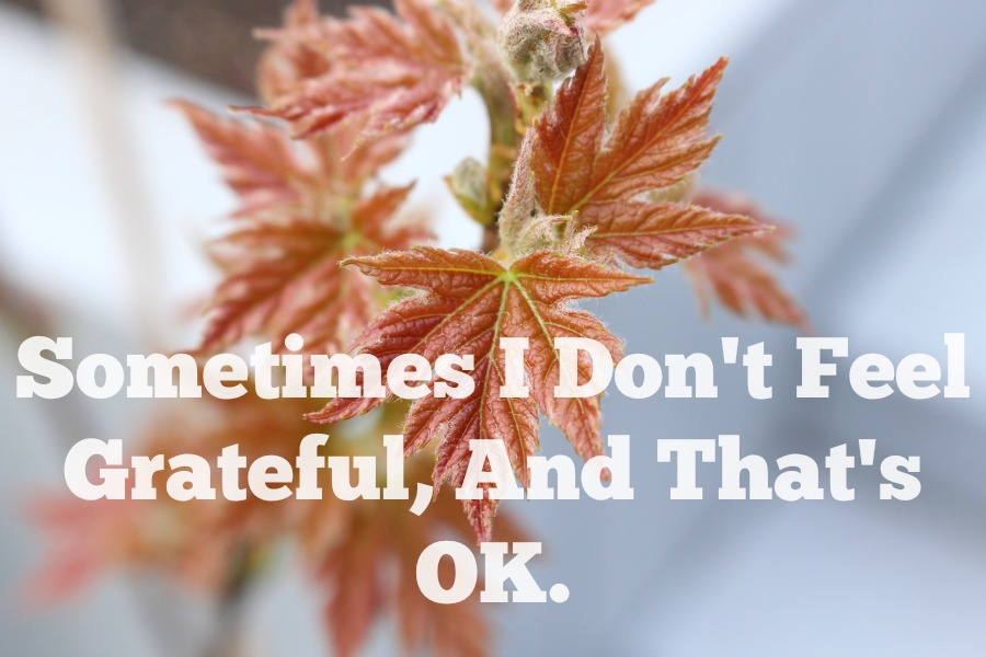 Sometimes I Don't Feel Grateful, And That's OK.