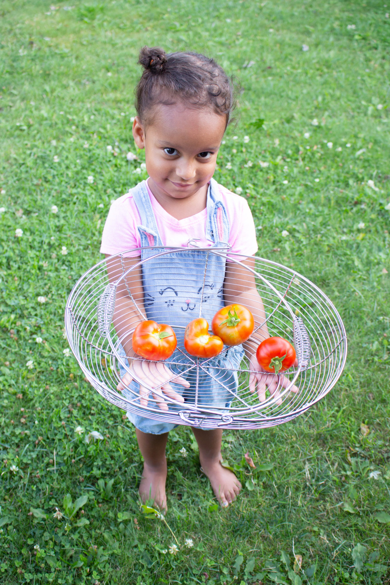 Heart-Shaped Tomato And More Garden Update!