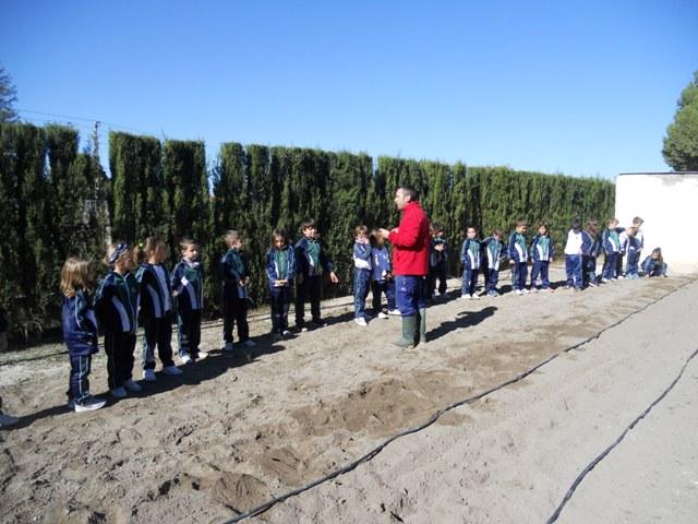 Siembra y plantación en el huerto