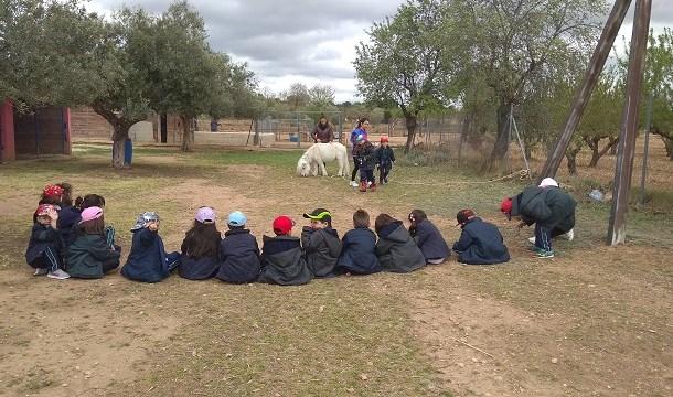 Excursión Granja-Escuela Altalluna