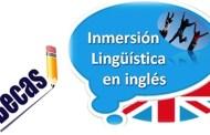 Ayudas programa de Inmersión Lingüística en colonias de vacaciones 2019.