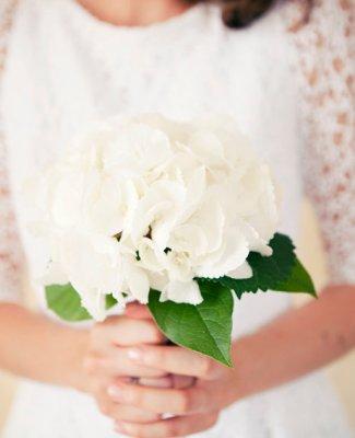 Demandes en mariages