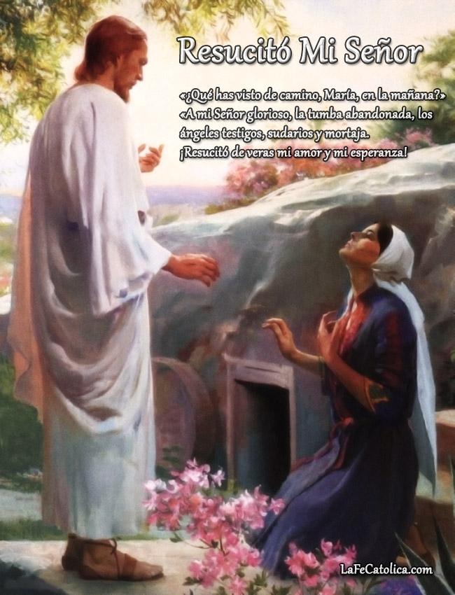 Resucitó Mi Señor