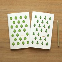 Set grands carnets SEEDS