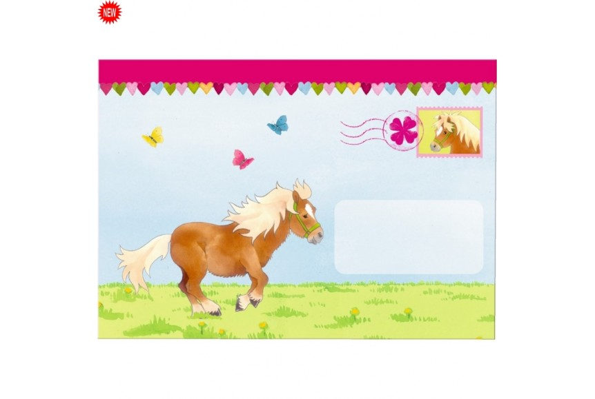 invitation poney
