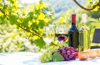 cours de vin