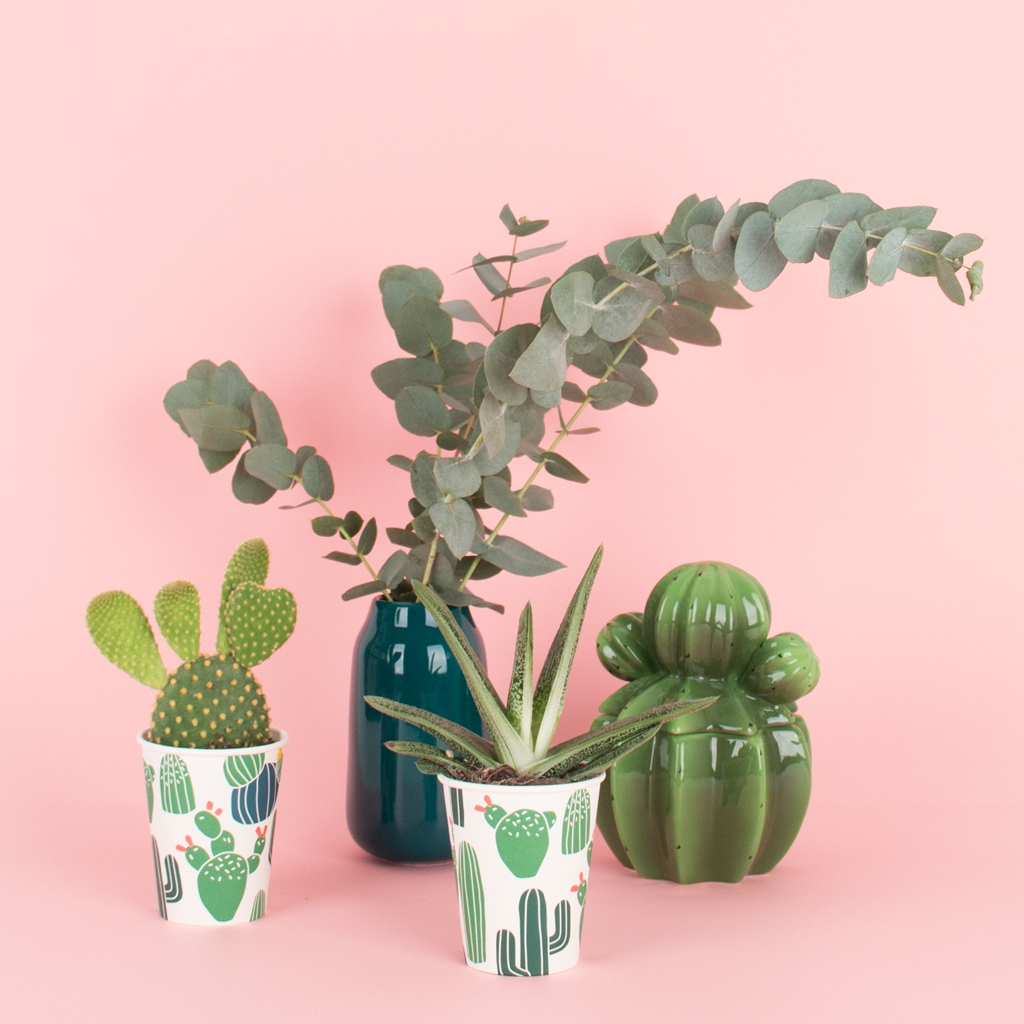 Idee deco EVJF theme cactus My Little Day l La Fiancee du Panda blog mariage