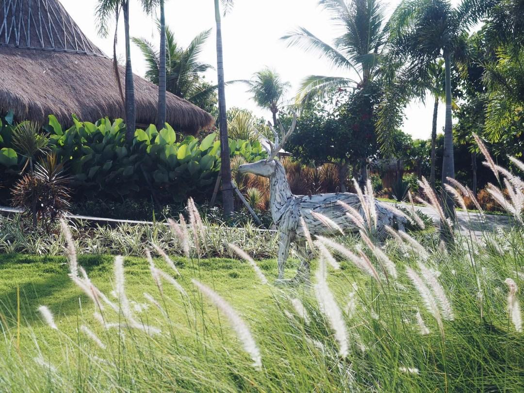 Bali voyage ethique protection corail Avene Pur Projet l La Fiancee du Panda blog mariage et lifestyle-3270686