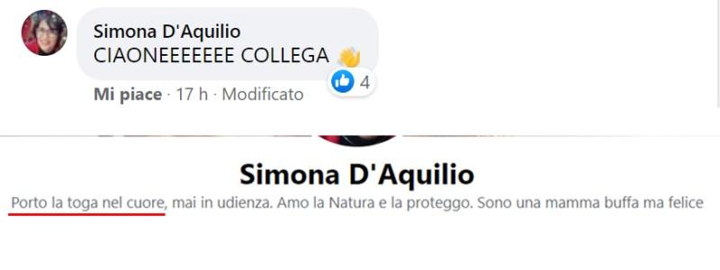 facebook d'aquilio massaro