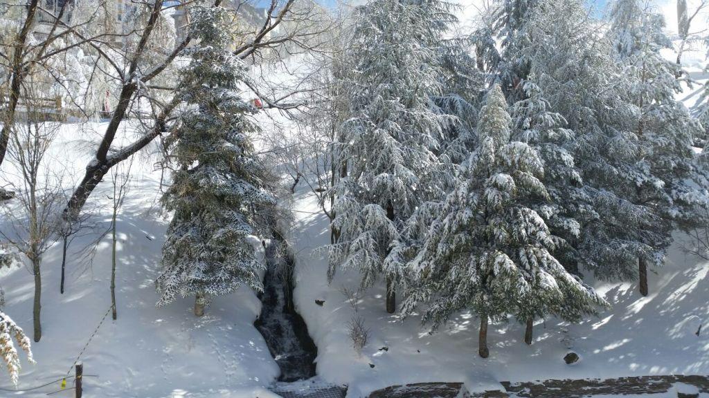 por fin cae la nieve en sierra nevada, restaurante la fondue de noa